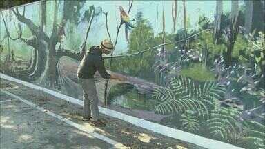 Projeto 'Voluntários da Arte' conquista moradores e colore os muros de Piracicaba - Projeto também evita que áreas públicas sejam pichadas.