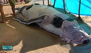 Filhote de baleia não resiste e morre em Pontal do Ipiranga, ES - Animal estava encalhado em praia de Linhares.Moradores tentaram mantê-lo hidratado.