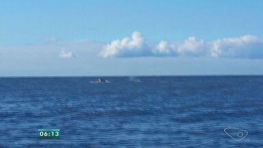 Baleias jubartes dão show na costa do ES nos últimos dias - O Espírito Santo é o ponto de chegada de uma viagem que começa na região da Antártida. A equipe do Instituto Últimos Refúgios usa a fotografia como aliada da preservação ambiental.