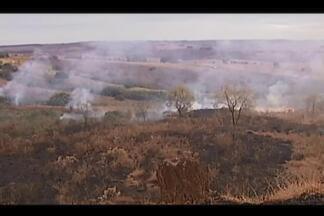 Fogo atinge mata nativa em fazendas em Patos de Minas; veja vídeo - Segundo testemunhas, incêndio é criminoso e atingiu três nascentes. Bombeiros e voluntários estão no local para conter as chamas.
