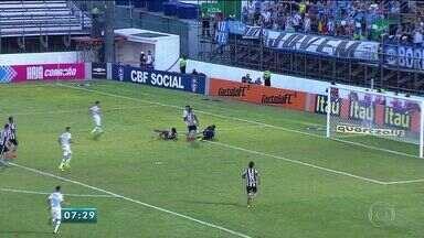 Botafogo vence o Grêmio pelo Campeonato Brasileiro - Jogo aconteceu neste domingo (4).