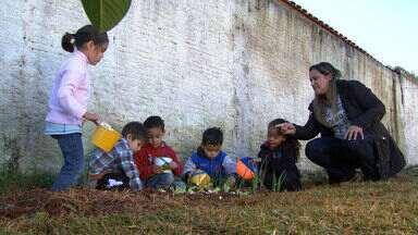 Uma creche nota 10! - Em Capão Bonito, o De Ponta a Ponta conheceu uma creche sustentável. A criançada gostou da ideia e já está levando algumas ações que aprenderam com os professores para dentro de casa.