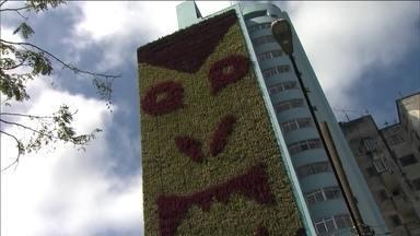"""""""Corredor verde"""" será lançado neste sábado (10), no Minhocão - Como sempre, o Minhocão será aberto para pedestres, às 15h, mas neste fim de semana será especial. O projeto """"Corredor verde"""" consiste nos jardins verticais dos prédios da região."""