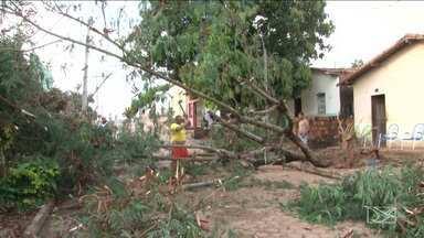Temporal com fortes ventos causa estrago em Açailândia - Árvores caíram e casas foram destelhadas na cidade. Um pessoa ficou ferida.