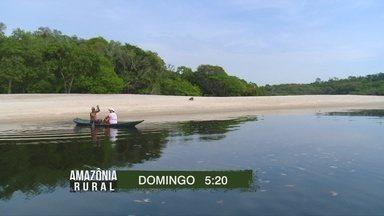 Reserva de desenvolvimento sustentável do Tupé será destaque do Amazônia Rural - Saiba quem são os guardiões desta região.