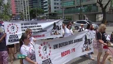 Defensores dos direitos dos animais fazem protesto no Recife - Eles pediram aumento de pena para quem comete crimes.