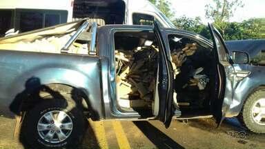 Caminhonete envolvida em acidente com morte estava cheia de maconha - O acidente na BR-153 deixou uma pessoa morta e cinco feridas. O motorista fugiu sem prestar socorro, mas foi preso durante a tarde.