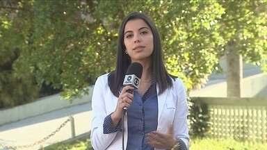 Santa Catarina volta a registrar caso de raiva canina depois de 10 anos - Santa Catarina volta a registrar caso de raiva canina depois de 10 anos