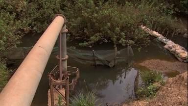 Estiagem faz agricultores reduzirem a irrigação em propriedades no DF - Área de agricultura irrigada no Distrito Federal está 30% menor do que há um ano.