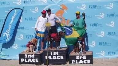 Storm Dogs: melhores que Medina, cães brasileiros fazem história em mundial de surfe - A competição que realizada por pessoas que amam o esporte e os animais reúne cachorros de vários lugares do mundo.