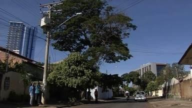 Morador teme que árvore caia sobre a casa dele, em Goiânia - Auxiliar de escritório, Clayton Henrique França de Castro acredita que a planta pode cair a qualquer momento.