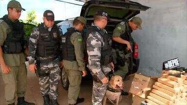 Polícia cumpre mandados de busca e apreendem mais de 60 quilos de drogas em operação - Polícia cumpre mandados de busca e apreendem mais de 60 quilos de drogas em operação