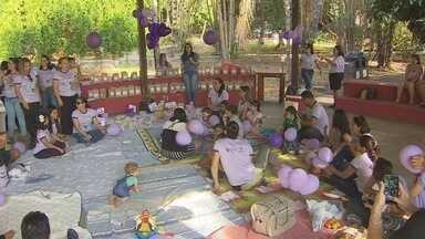 Pais de filhos prematuros realizaram um encontro em Macapá - As mães dos bebês que nasceram prematuros se reuniram para saber a evolução das crianças, e trocar experiências sobre o desenvolvimento das crianças.