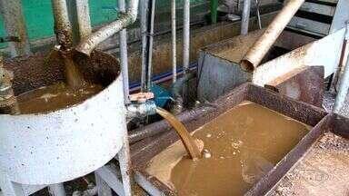 Lei obriga restaurantes a fazer destinação correta do óleo usado na cozinha, em Vila Velha - São 30 mil litros de óleo reciclados todo mês.