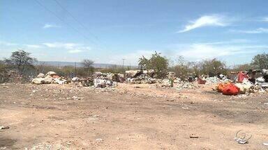 Fiscalização flagra lixão dentro de área indígena em Pariconha - Segundo o MP, a prefeitura da cidade é a responsável pelo descarte irregular.