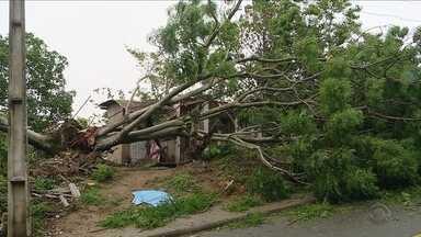 Temporal deixa estragos em diversos bairros de Florianópolis e na região Sul de SC - Temporal deixa estragos em diversos bairros de Florianópolis e na região Sul de SC
