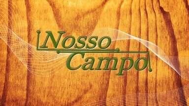 Chamada: veja os destaques do Nosso Campo deste domingo (11/12), às 7h25 - Confira as principais atrações do próximo programa.