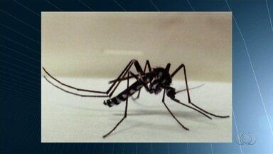 SES-GO confirma quatro casos de febre Mayaro no estado - Foram três casos em Orizona e um em Aparecida de Goiânia.