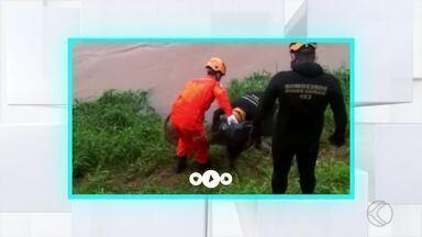Corpo de homem é encontrado boiando em rio de Juiz de Fora - Bombeiros retiraram vítima já sem vida. Ocorrência foi no início da noite de segunda (12); correnteza estava forte.