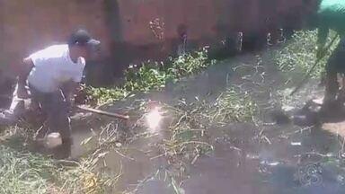 Moradores do São Lázaro, em Macapá, limpam canal de avenida por conta própria - Agora eles querem que a prefeitura conclua o serviço para não dar problema com a chegada do período de chuvas.