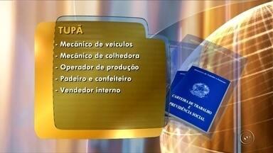 PAT de Tupã oferece várias vagas nesta terça-feira - Veja as vagas abertas nesta terça-feira no Posto de Atendimento ao Trabalhador de Tupã.