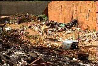 Moradores do Bairro Triângulo reclamam de lixo em um terreno - Dono da propriedade não foi localizado.