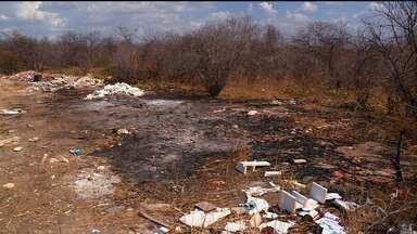 Terrenos baldios de Petrolina viram focos de incêndio - A maioria dos incêndios é provocado por moradores das redondezas.