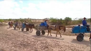 Cinco anos de estiagem deixam prejuízos para os produtores de SE - A busca pela água para irrigar plantações e saciar a sede das pessoas e dos animais está cada vez mais difícil.