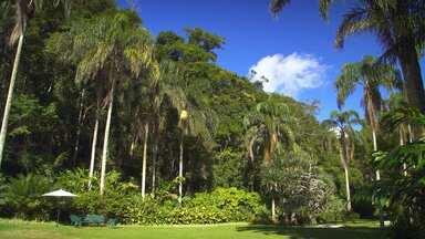 Verão - Parques E Jardins