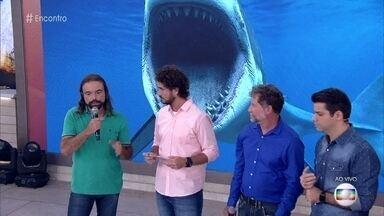 Paulo conta como foi atacado por um tubarão-limão em Fernando de Noronha - O engenheiro de pesca Léo Veras comenta o caso