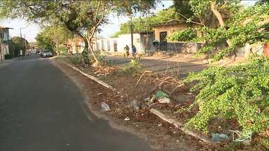 Moradores reclamam de sujeira em ruas de bairro em São Luís, MA - Moradores do Cohafuma reclamam também da falta de preservação das árvores do bairro.