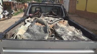 Mais de 70 kg de couro de gado são apreendidos no AM - Polícia encontrou material em abatedouro clandestino em Itacoatiara.
