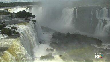 Parque Nacional do Iguaçu volta a liberar passeios de pedestres e ciclistas - Eles estavam proibidos por conta do aparecimento de onças