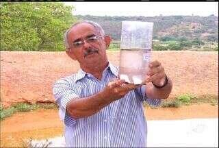 Mandacaru é usado para purificar água de barreiras no interior do Ceará - Planta é rica em fibras e é comumente encontrada no sertão do Ceará.