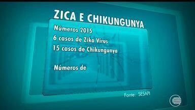 Número de casos de Dengue reduz e Zika aumenta no Piauí - Número de casos de Dengue reduz e Zika aumenta no Piauí