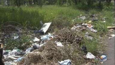 Terreno na Vila Maria, em Porto Ferreira, gera transtornos para moradores - Espaço foi transformado em um lixão.