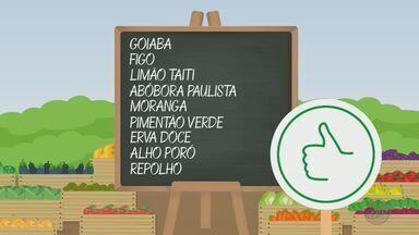'Barato da Feira' mostra as frutas e as verduras que estão com preços baixos - Goiaba, figo, limão Taiti, abóbora paulista e moranga estão mais em conta.