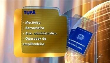 Confira as oportunidades de emprego no PAT de Tupã e Pederneiras - Confira as vagas de emprego disponíveis para as cidades de Tupã e Pederneiras (SP).