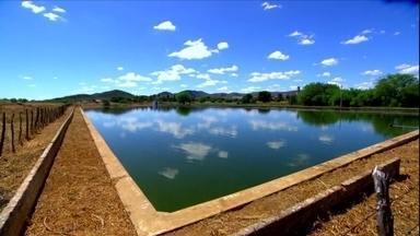 Projeto no RN reaproveita água de esgoto para produção agrícola - Água de esgoto tratada serve para cultivar palma e irrigar o pasto. Daí os criadores de gado tiram leite e os agricultores produzem até cachaça.