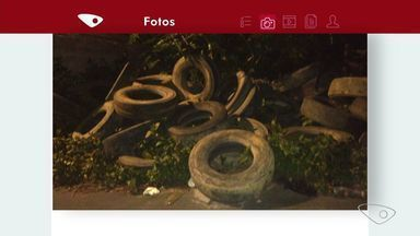 Imagens mostram pilhas de pneus em área aberta de Cariacica, ES - Prefeitura disse que uma equipe da Vigilância Epidemiológica será enviada nesta sexta até o bairro São João Batista para notificar o dono do terreno.