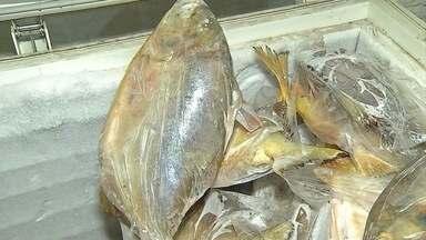 Termina período de piracema nos rios de Mato Grosso do Sul - Segundo a Polícia Militar Ambiental, desde novembro, quando a piracema começou, houve apreensão de 1,4 tonelada de pescado.