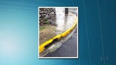 Jacaré é encontrado por moradores após forte chuva no Recife - Morador disse que animal saiu de rua alagada.