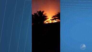 Incêndio consome mata entre dois condomínios em Guarajuba, no litoral norte da Bahia - Segundo os moradores, o fogo começou por volta das 14h.