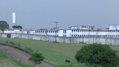 Projeto é exemplo de ressocialização de presos - O projeto funciona na Penitenciária Central do Estado em Piraquara.