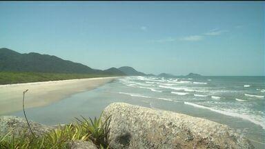 Praia da Laje é opção de turismo em Cananeia - Ela fica na Ilha do Cardoso e é uma das praias desertas da região.