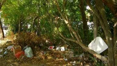 Horto Municipal de Cabo Frio, RJ, sofre falta com segurança e estrutura - Moradores fazem reclamações constantes sobre o local.