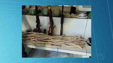 Suspeito de integrar grupo de assaltos a banco é morto no Sertão de Alagoas - Outras duas pessoas foram presas durante ação policial que aconteceu nos municípios de Ouro Branco e Canapi.