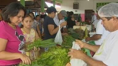 Moradores da Zona Sul de Macapá recebem feira itinerante - Feira itinerante ocorreu na escola Antônio Castro Monteiro, no Zerão.