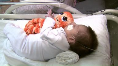 Polvinhos de crochê ajudam bebês prematuros no processo de recuperação - Os tentáculos do polvinho se assemelham ao ambiente do útero materno e ajudam os bebês a se acalmarem, agilizando o processo de recuperação.