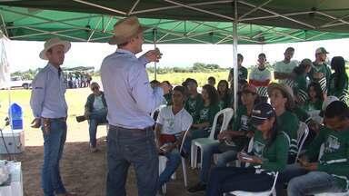 Estudantes têm aulas práticas de manejo de culturas como soja e algodão - As aulas estão sendo ministradas na Fazenda Modelo, no oeste do estado.
